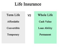 Term life vs whole life royalty free stock photos