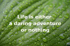 Free Life Is Either A Daring Adventure Or Nothing Royalty Free Stock Image - 206054516