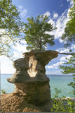 Life-Line of a tree  on rocks Pictured-rocks. Tree with 2 roots extending to land over the erosion of sand stome and water at Lake Superior upper-peninsula Stock Photos
