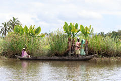 Life in madagascar countryside on river Royalty Free Stock Photography