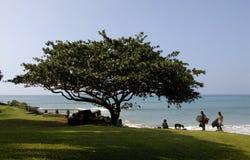 LIFE AT MAKENA BEACH Royalty Free Stock Photo