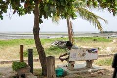 Life in Malindi Stock Photography