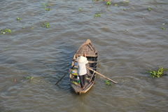 Life in Mekong Delta, Vietnam Royalty Free Stock Photo