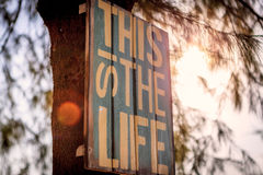 This is the life Stock Image