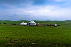 Life in Mongolia Royalty Free Stock Image