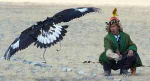 Life of the Mongolian eagle hunter 19 Stock Images