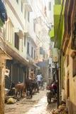 Varanasi streets, India royalty free stock photography