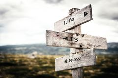 Life is now signpost. royalty free illustration