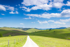 Life is an Open Road. An open Road. Beautiful meadow on sunny day Royalty Free Stock Photo
