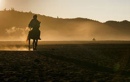 Life of People and Horse in Bromo Stock Image