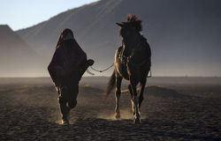 Life of People and Horse in Bromo Royalty Free Stock Image