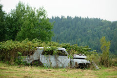 Life after people. Oldmobile in the forest. Bieszczady, Poland Stock Photo