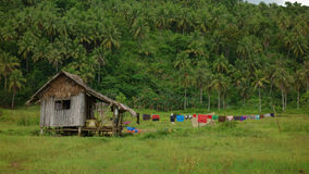 Life in the Philippine countryside Stock Images