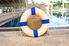 Life preserver floating. In swimming pool Stock Image