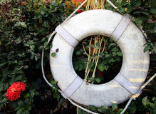 Life Preserver. A life preserver next to a red flower and in front of green vegetation Royalty Free Stock Photo