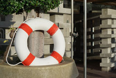 Life preserver on the plant pot. With sunlight royalty free stock photos