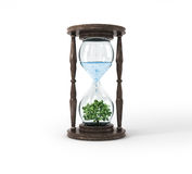 Life process of tree inside Glass clock, Royalty Free Stock Image