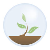 Life Protection (Vector). Vector illustration of a protected young tree. The need to save our planet and the important roll of trees on it Royalty Free Illustration