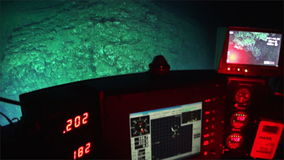 Life of reefs coral deep sea view from submarine in 300 m depth Pacific Ocean. stock video footage