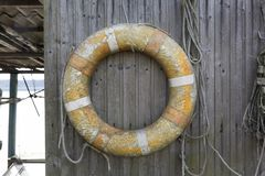 Life ring hanging on a wooden wall Stock Image