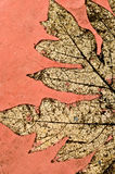 Life in rock. A leaf texture in tile Stock Image