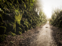 Life`s Path. A long path that reaches out in to the distance Royalty Free Stock Image