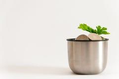 Life saving green plant. Green plant growing up above a lot of coins, life savings make sense concept Stock Photos