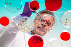 Life science Stock Images