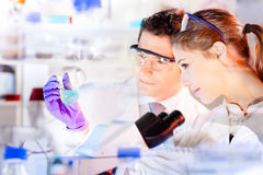 Life science researchers observing blue solution in laboratory. Stock Photos
