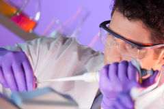 Life scientist pipetting. Royalty Free Stock Photos