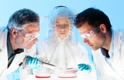 Life scientist pipetting. Royalty Free Stock Photography