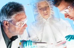 Life scientist pipetting. Stock Image