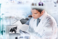 Life scientist researching in the laboratory. Life scientist researching in laboratory. Attractive young male scientist looking at the microscope slides in Royalty Free Stock Image