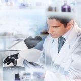 Life scientist researching in the laboratory. Life scientist researching in laboratory. Attractive young male scientist looking at the microscope slides in Stock Image