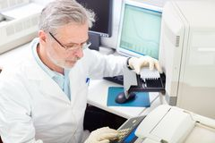 Life scientist researching in the laboratory. Life science researcher  performing a genotyping testing which enables personalized medicine. PM is a medical Royalty Free Stock Images