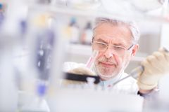 Life scientist researching in the laboratory. Life scientist researching in laboratory. Life sciences comprise fields of science that involve the scientific stock image