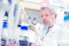 Life scientist researching in the laboratory. Life scientist researching in laboratory. Life sciences comprise fields of science that involve the scientific Stock Photo