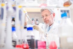 Life scientist researching in the laboratory. Life scientist researching in laboratory. Life sciences comprise fields of science that involve the scientific royalty free stock images