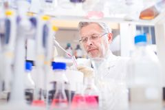 Life scientist researching in the laboratory. Life scientist researching in laboratory. Life sciences comprise fields of science that involve the scientific stock photography
