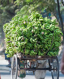 Life in Siliguri. Transport of produce in Siliguri, India Stock Photo