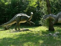Predator dinosaur lurking to attack an iguanodon in the wood of the Extinction Park in Italy Stock Photo