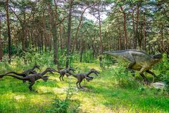Raptors on a hunt Royalty Free Stock Images