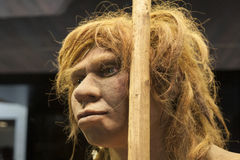 Life-sized sculpture of Neanderthal female. Madrid, Spain - July 10, 2016: Life-sized sculpture of Neanderthal female at National Archeological  Museum of Madrid Royalty Free Stock Photo