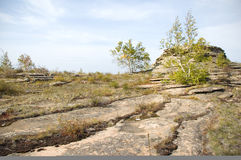 Life on stones. This picture is made in the east of the Orenburg region. A nature sanctuary of regional value Stock Image