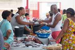Life on the streets of Mindelo. Fish market. San Vicente Island, Cape Verde Royalty Free Stock Photography