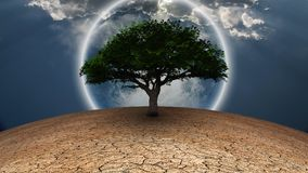 Life. Surrealism. Green tree in arid land. Full moon in blue sky Royalty Free Stock Photo