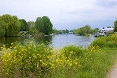 Walton-on Thames England. Life on the Thames river, England stock photo