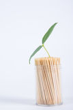 Life toothpick Royalty Free Stock Images