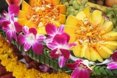 Life in the tropics royalty free stock photos