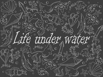 Life under water chalk vector illustration Royalty Free Stock Image